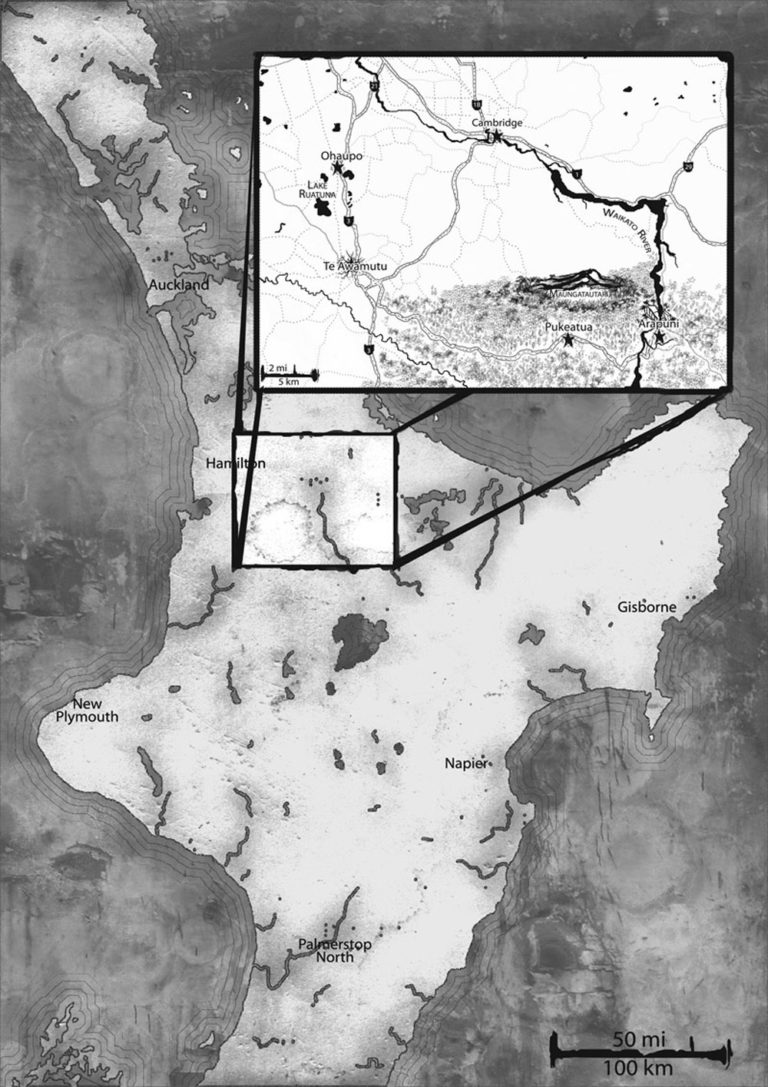 New Zealand fantasy map with inset black and white digital media map cartography